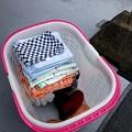 写真: 洗濯物、取り込む時点で畳んどけばあとが楽~誰もやろうとしない我が家の女子連…(・・)ぴ1