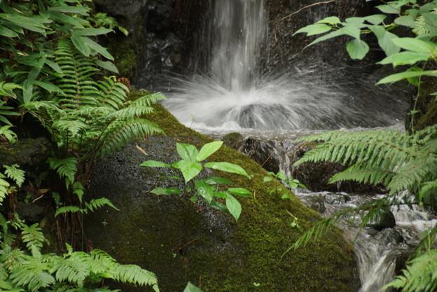 マイナスイオン滝2016
