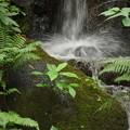 写真: マイナスイオン滝2016