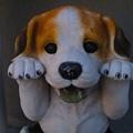 写真: 犬の置物