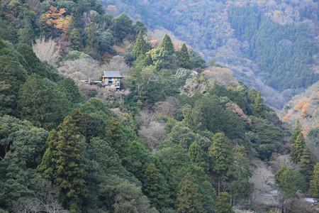亀山公園 - 05