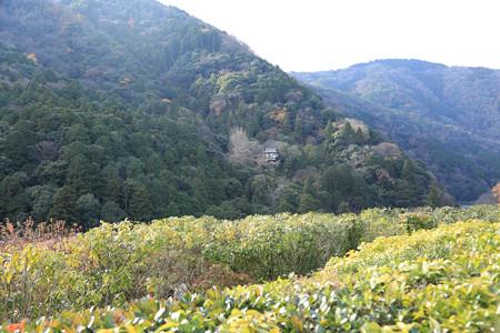 大河内山荘 - 05