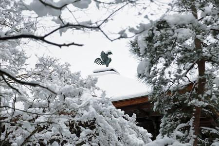 銀閣寺 (6)