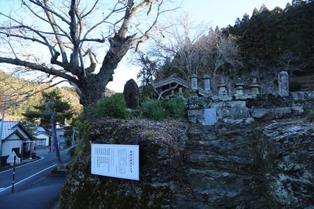 渋川井伊家墓所
