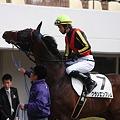 Photos: クランエンブレムと横山義行騎手2