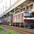 Photos: 金太郎4号機牽引臨貨8062レ