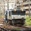Photos: EF64 1008号機牽引配6794レ浜川崎通過