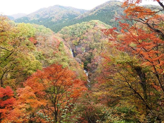 紅葉の霧降の滝遠景