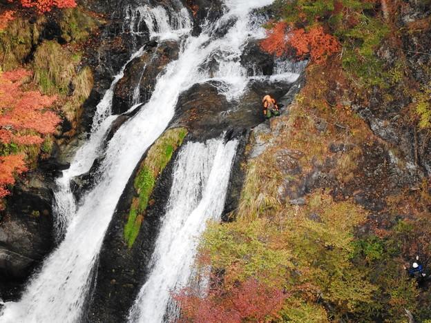 紅葉の滝に