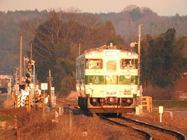 Photos: 夕陽の烏山線
