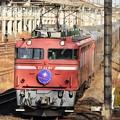 Photos: EF81 81牽引カシオペア紀行8010レ宇都宮貨物(タ)通過