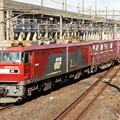 Photos: 宇都宮貨物(タ)へ進入する高速貨物94レ