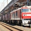 Photos: 金太郎66号機牽引高速貨物94レ