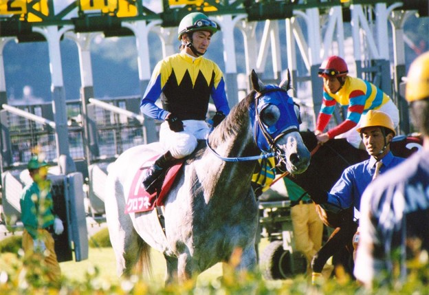 Kurofune02(2001年神戸新聞杯)