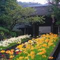 rs-160924_10_参道から山門を・SH(西方寺) (17)