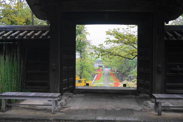 rs-160924_14_山門からの参道を望む・SH(西方寺) (1)