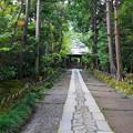 rs1-160926_94_中門への石畳・SH(寿福寺) (4)