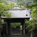 rs1-160926_95_中門・SH(寿福寺)