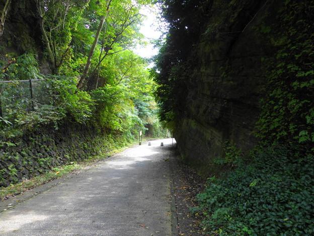 rs-160926_44_切通しの様子(亀ヶ谷坂) (3)