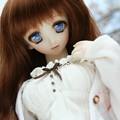 Photos: IMG_1253