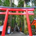 箱根神社2
