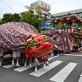 写真: 巨大獅子舞