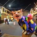 Photos: 木曽踊り最終日
