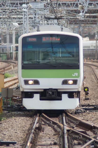 DSC07339