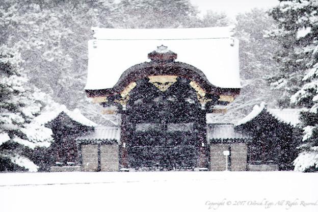 京都御所-0210