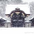 写真: 京都御所-0210