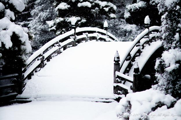 写真: 京都御所-0213