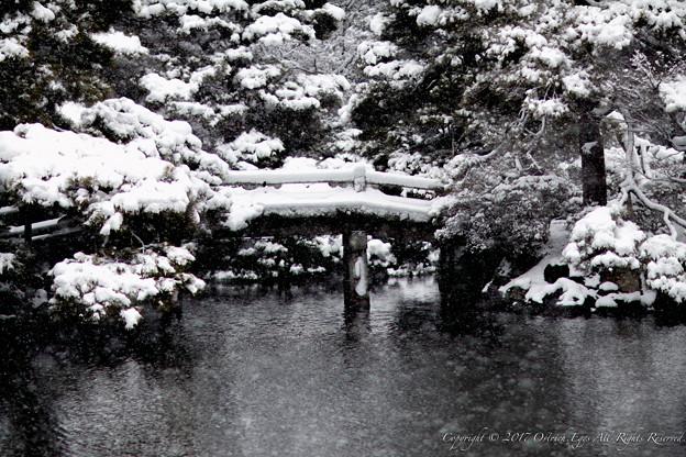 写真: 京都御所-0216