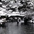 Photos: 京都御所-0216