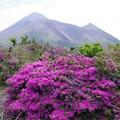 高千穂峰と御鉢