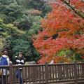 観音滝公園 b