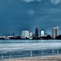 ガーニーの海岸と白鷺