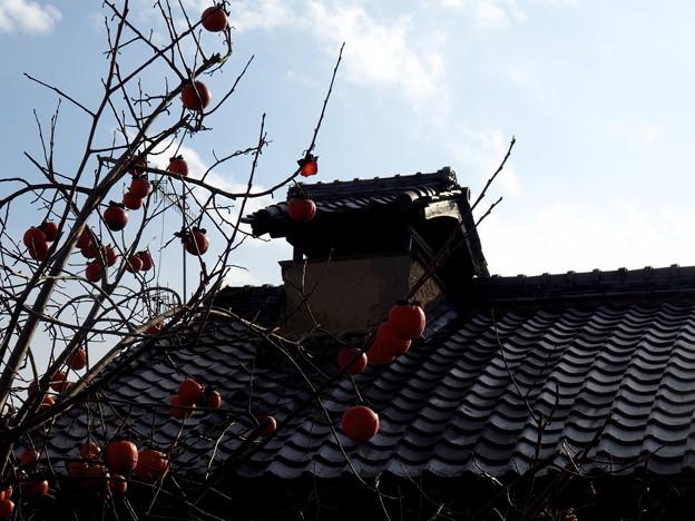 写真: 越し屋根のある家。