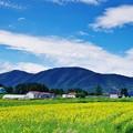 Photos: 赤井川村