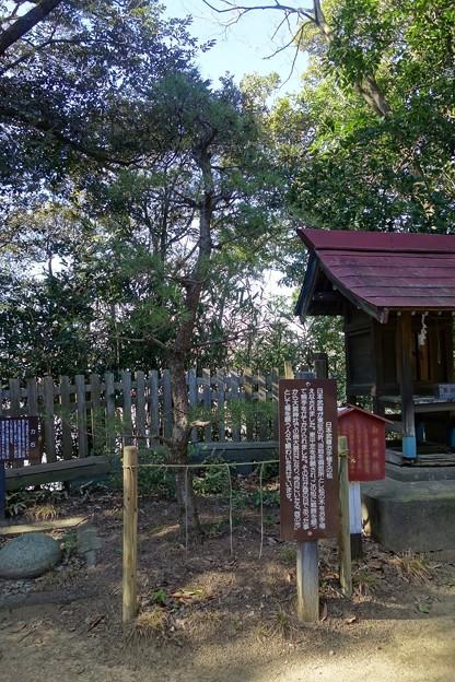 大鷲神社@安食DSC02302
