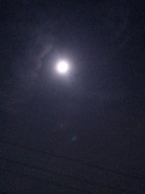 明日は雨予報だから、ウルトラスーパームーン1日前に見たお月様(/- -)/