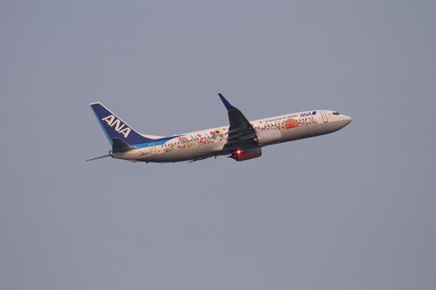 B737 JA85AN ANA FLOWER JET takeoff