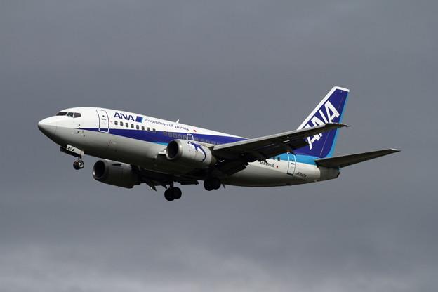 B737-500 ANA Wings JA8404