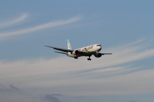 B763チョット秋の気配 AirDo