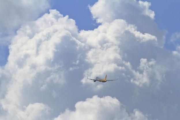 A320 Vanilla 夏の雲と