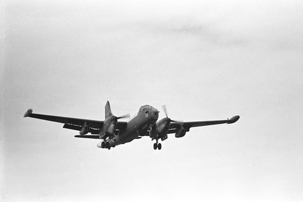 P-2J 4738 203空 厚木1974.09
