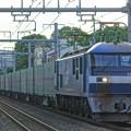 Photos: 55レ【EF210-10牽引】