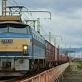 Photos: 1083レ【EF66 30牽引】