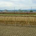 Photos: 16000系 4連
