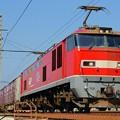 Photos: 83レ【EF510-22牽引】