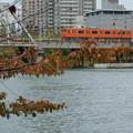 103系:大阪環状線